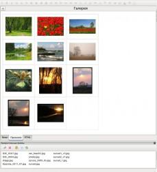 gallery_03.jpeg: 895x976, 137k (03.07.2012 20:34)