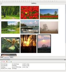 gallery_01.jpeg: 893x975, 210k (03.07.2012 20:36)