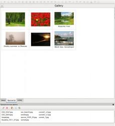 gallery_05.jpeg: 893x975, 103k (03.07.2012 20:36)