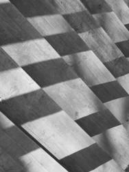chess_2009_05.jpg: 488x650, 127k (30.05.2012 22:16)