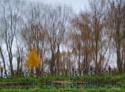serpuhov_nature_01.jpg: 820x606, 281k (30.05.2012 22:31)