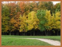 autumn1.jpg: 734x559, 147k (30.05.2012 22:30)