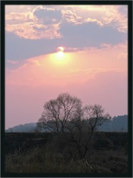 sunset1_v3.jpg: 515x689, 64k (30.05.2012 21:55)