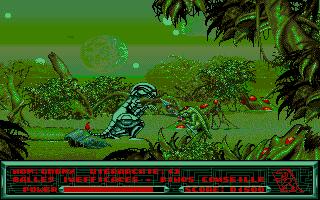 Схватка двух якодзун рептилий.