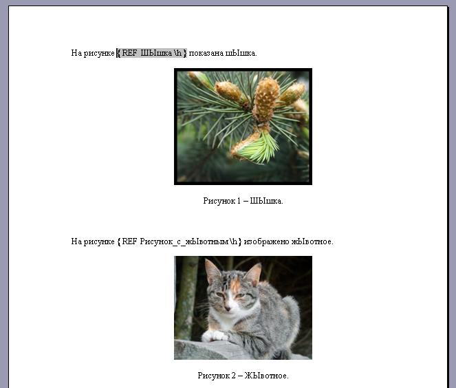 Коды полей при использовании ссылок на закладки
