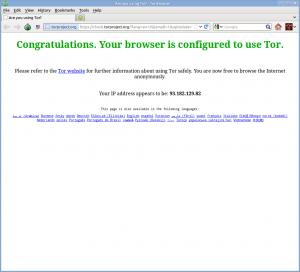 Окно Tor Browser после подключения